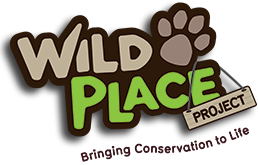 Wild Place Voucher Codes