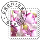 Orchids By Post coupons