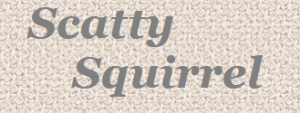 Scatty Squirrel coupons